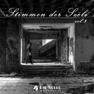 Stimmen Der Seele Vol.3